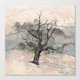 Jake's Tree Canvas Print