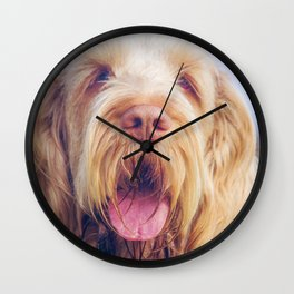 Orange & White Italian Spinone Wall Clock