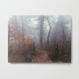 Appalachian Trail in Fog Metal Print