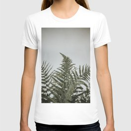Minimalistic fern leaves   Colourful Travel Photography   Amsterdam, Holland (The Netherlands) T-shirt