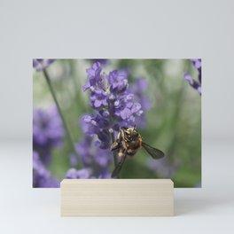 Busy Bee Mini Art Print