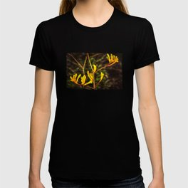 Yellow Kangaroo Paw flower against a blurred background T-shirt
