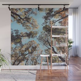 Look at the Sky - Forest Wall Mural