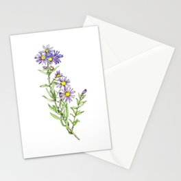Purple Aster Wildflowers Stationery Cards