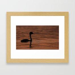 Grebe Silhouette on the Morning Lake Framed Art Print