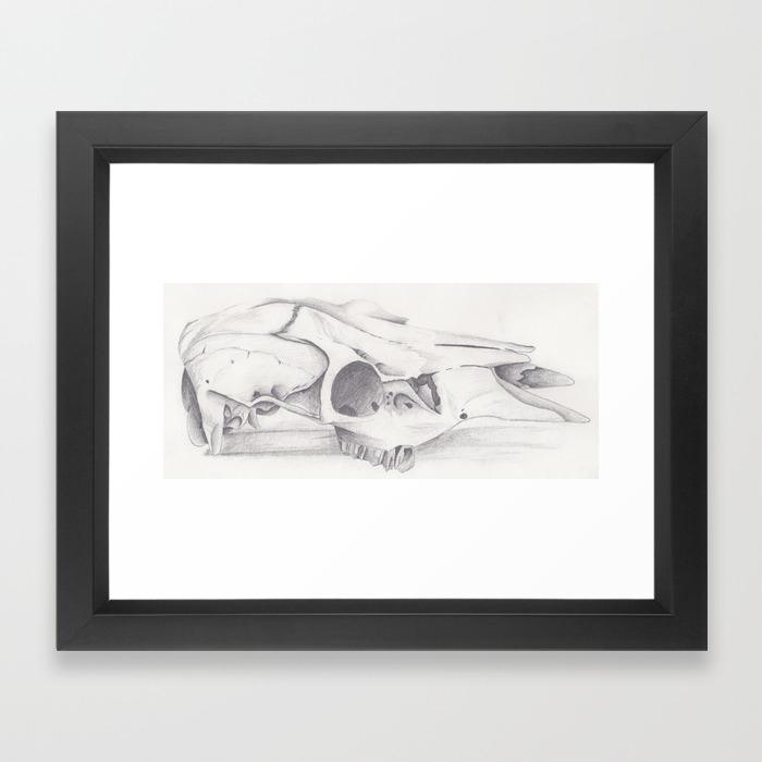 Skull realism pencil drawing framed art print