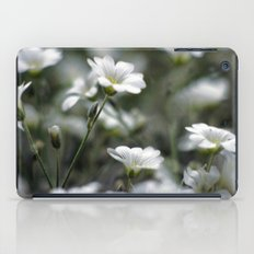 Snow In Summer iPad Case