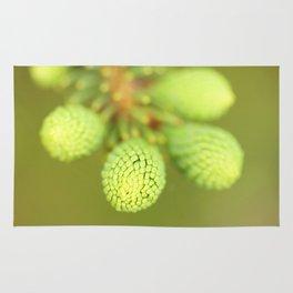 New Growth - Spruce Tree Rug