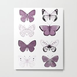 Butterflies Study no. 12 - butterflies, butterfly art, mauve butterflies, purple butterflies, butterfly art, mauve, butterfly stickers Metal Print