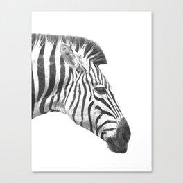 Black and White Zebra Profile Canvas Print
