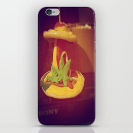 My Lovely Earth Jam  iPhone Skin