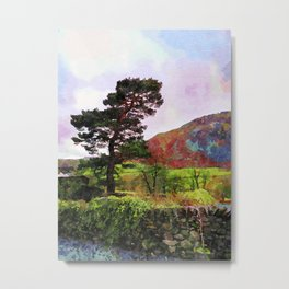 Pine and dry stone wall at Grasmere, Lake District, England Metal Print
