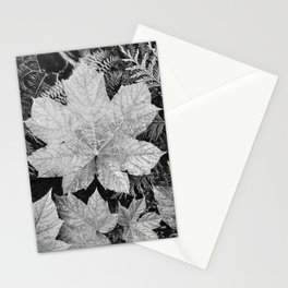 Ansel Adams - Leaves Stationery Cards