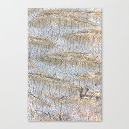 Sliced Bark Canvas Print