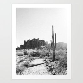 Arizona Desert Art Print