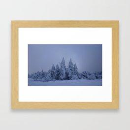 pines & snow Framed Art Print