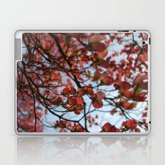 Pink Dogwood Laptop & iPad Skin