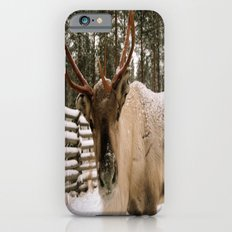 Adorable In The Arctic iPhone 6s Slim Case