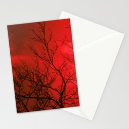 Bare Beech Stationery Cards