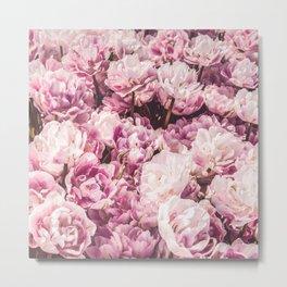 P.Rose-Mairy Metal Print