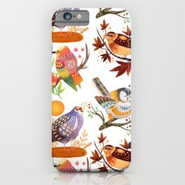 Seasonal Birds iPhone Case