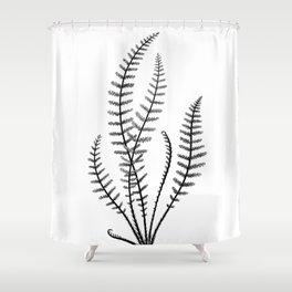 Minimal Black Fern Shower Curtain