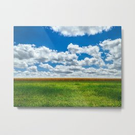 Toy Story Cloud Day Metal Print