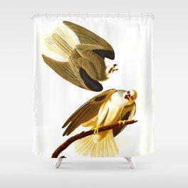 Black Winged Hawk Illustration Shower Curtain