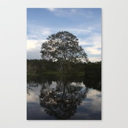 Reflected Tree on the Waters Canvas Print