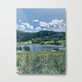 Norwegian Countryside Metal Print