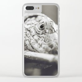 Southeastern Girdled Lizard Clear iPhone Case