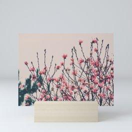 Pastel Magnolia Mini Art Print