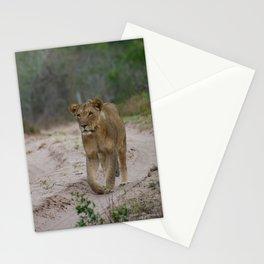 Female Lion at Tembe Elephant Park Stationery Cards