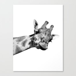 Black and white giraffe Canvas Print