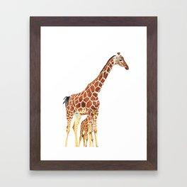 Giraffe Art - A Mother's Love - By Sharon Cummings Framed Art Print