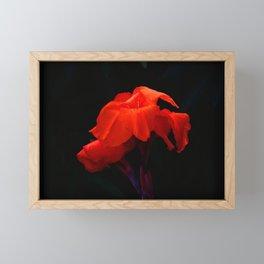 Orange Indian Reed Lily Flower Framed Mini Art Print