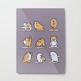 Pomeranian yoga Metal Print