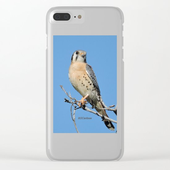 A Kestrel Says Hello Clear iPhone Case