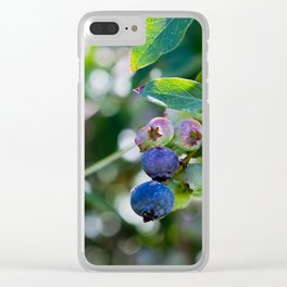 Blueberry Farm Clear iPhone Case