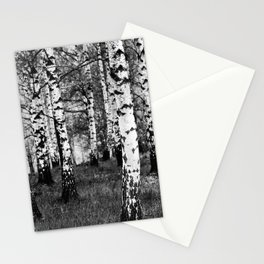 Birches 1 Stationery Cards
