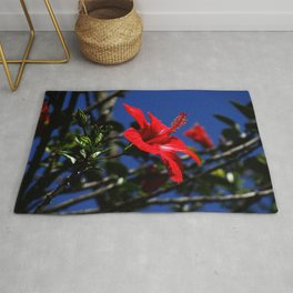 red hibiscus on dack blue Rug