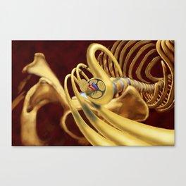 Spinal Nerves Canvas Print