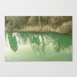 upside down and downside up. Canvas Print