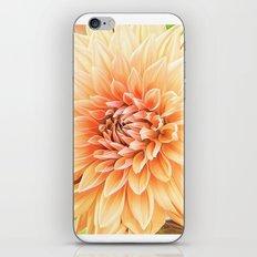 A Dalias Beauty iPhone & iPod Skin
