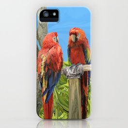 Scarlet Macaw Parrots Perching iPhone Case