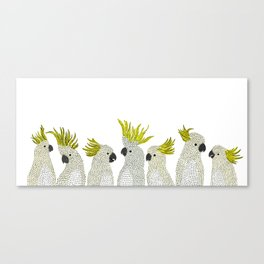 Cockatoos by Veronique de Jong Canvas Print