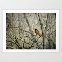 robin Art Prints featuring Robin by Dorothy Pinder