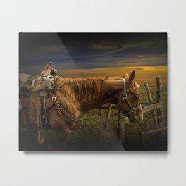 Saddle Horse on the Prairie Metal Print