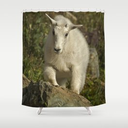 Straight for the Heart Shower Curtain