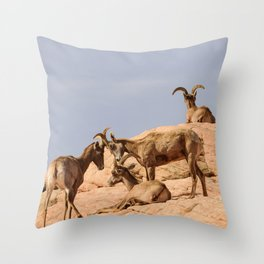 Seven Desert_Bighorn_Sheep - Valley_of_Fire, NV Throw Pillow